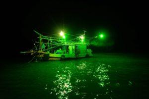 Langkawi squid challenge